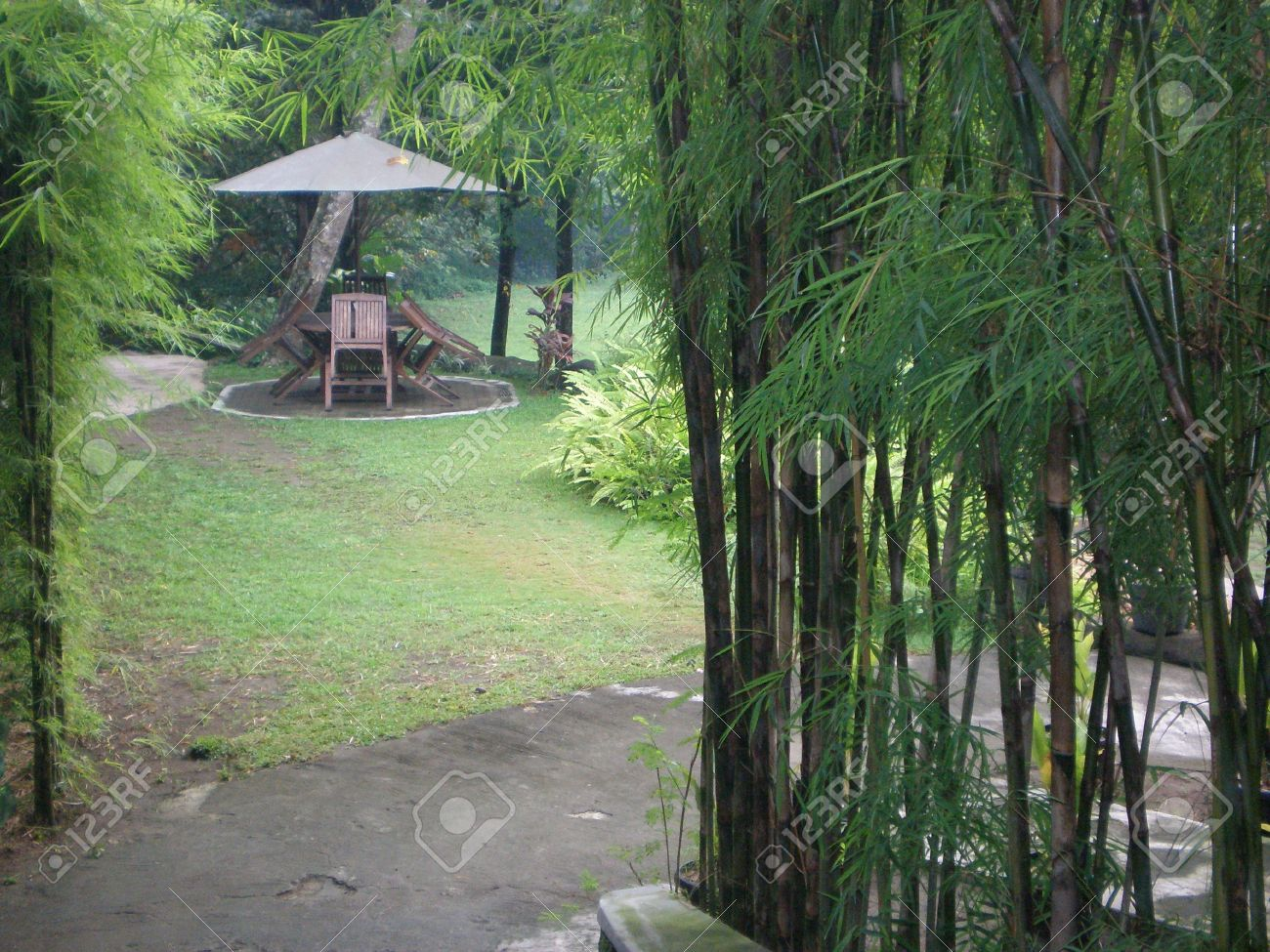 Beautiful Bamboo Garden, Backyard, Gazebo Stock Photo U2013 15399430