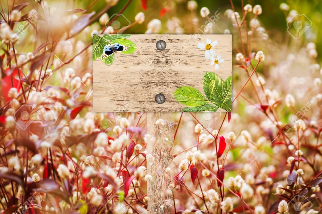 Wegweiser In Schonen Und Weisse Flora Rote Gras Im Garten Lizenzfreie