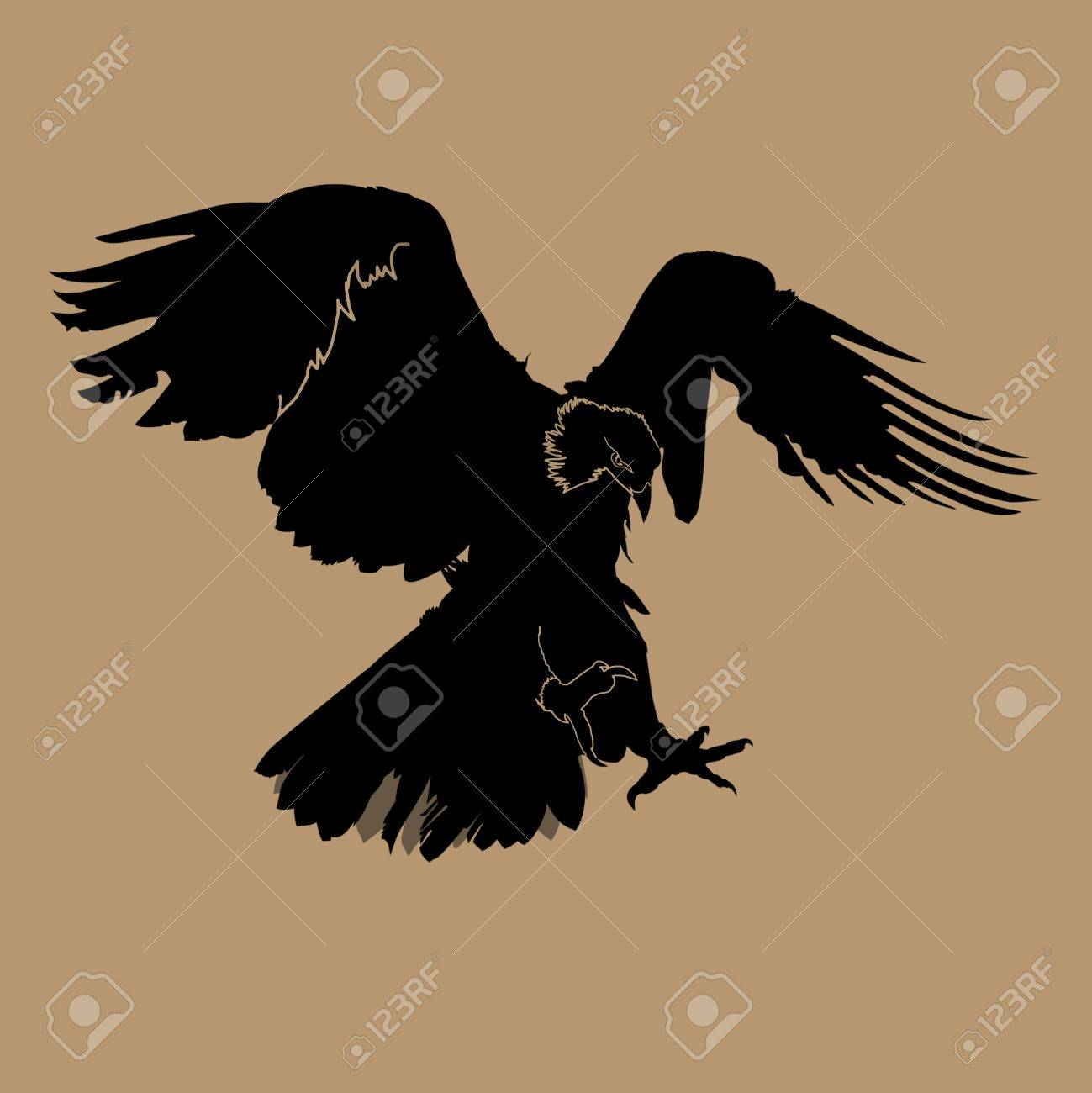 eagle silhouette Stock Photo - 11820393