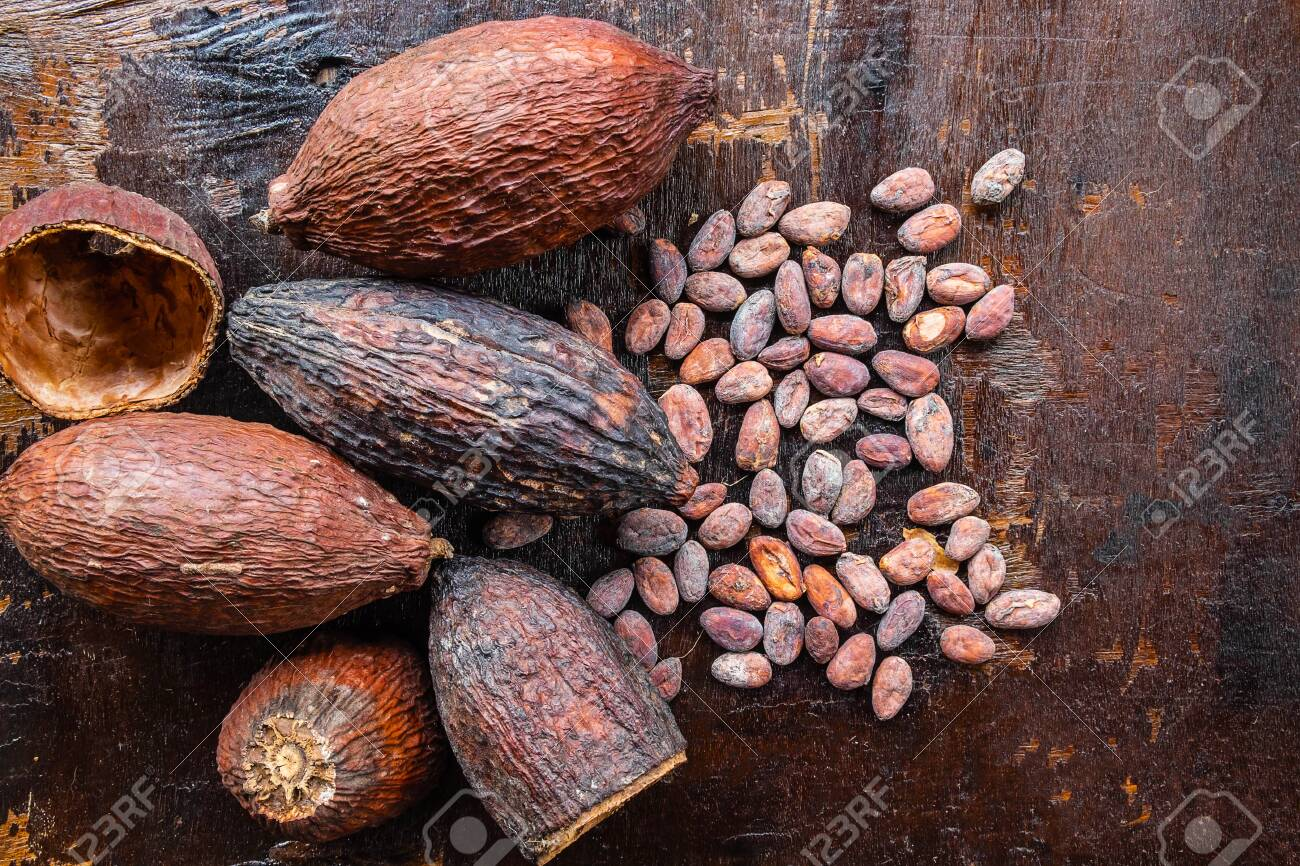 Dried cocoa and cocoa seeds on a wooden background - 122208646