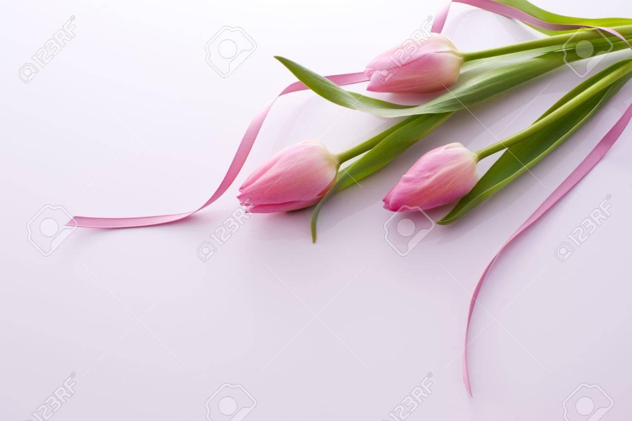 Pretty Pink Ribbon Pretty Pink Tulips With Ribbon