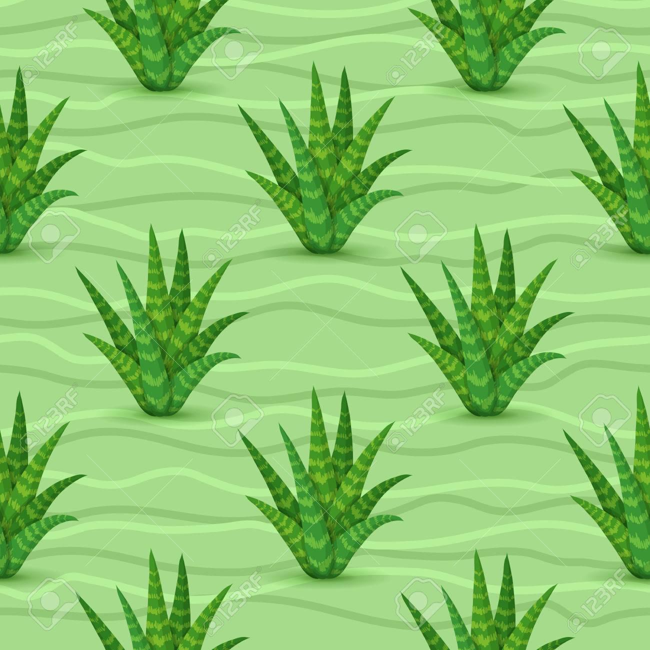 Succulents Seamless Pattern Vector Illustration With Aloe Vera