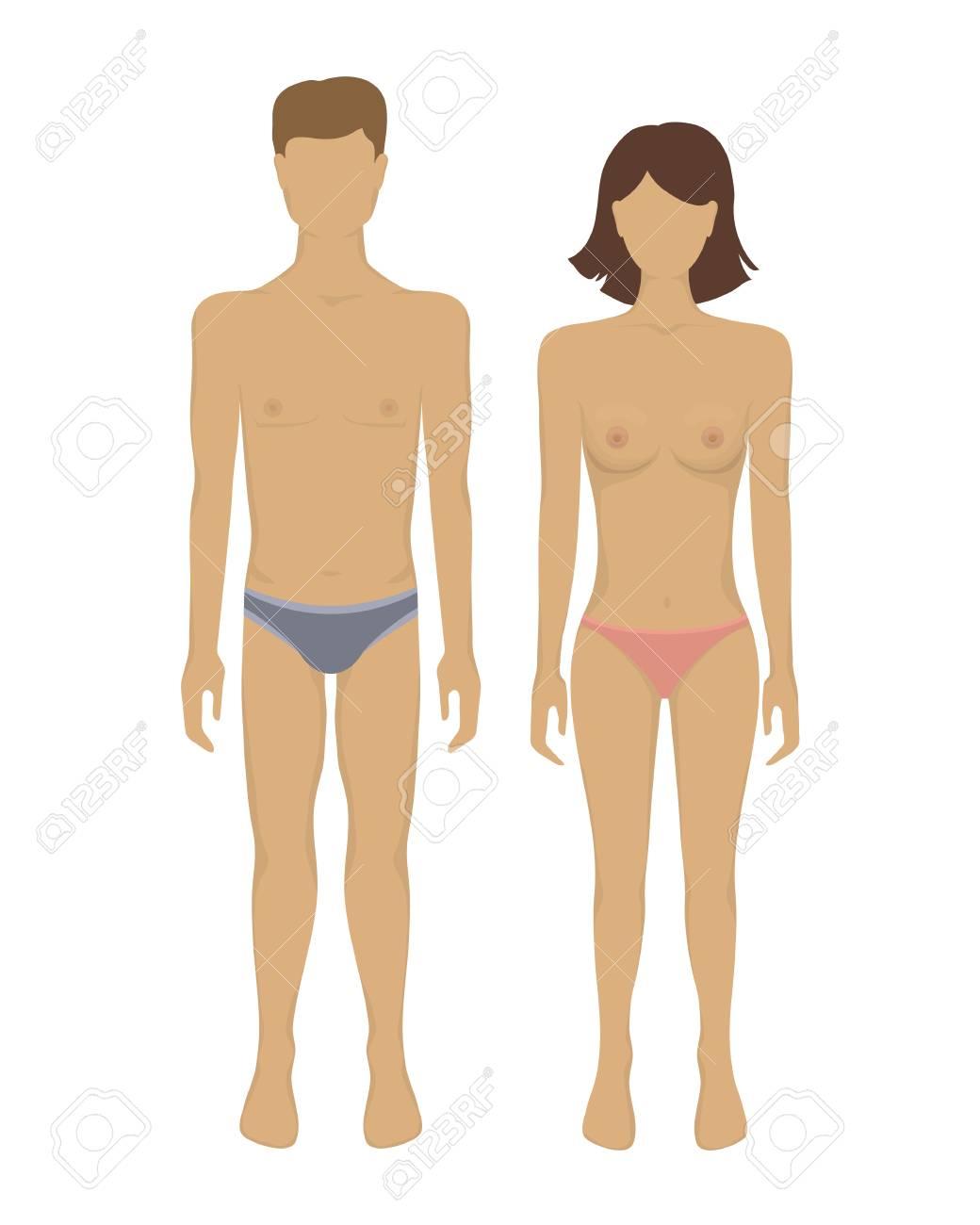 El Hombre Y El Cuerpo De La Mujer. Ilustración Del Vector Con El ...