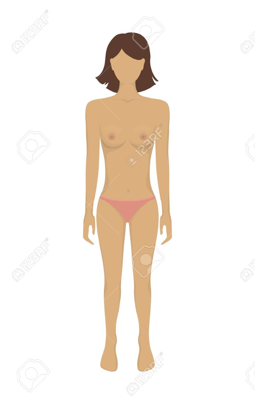 Female Body Woman Body In Underwear Vector Illustration Human