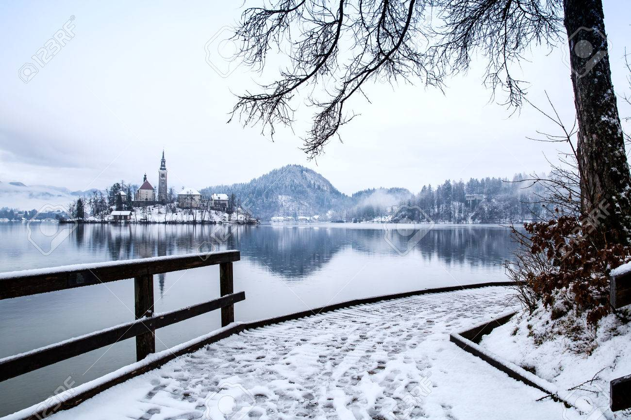 Snowy Wooden Pier On The Alpine Lake Bled Winter Landscape