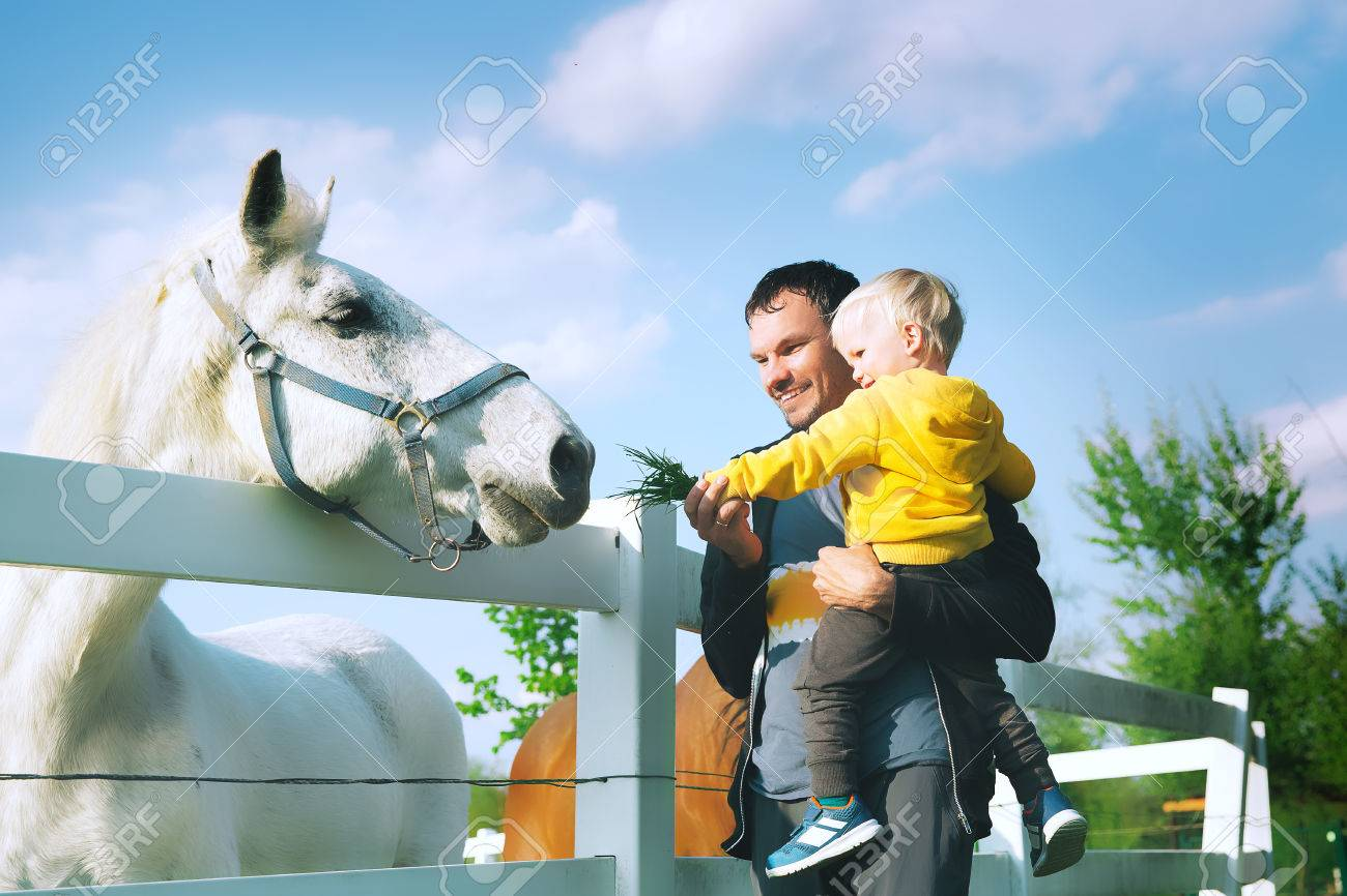 Father and son are feed a horse at countryside. Family on a farm at springtime. Toddler boy playing with pets outdoors. - 77881050