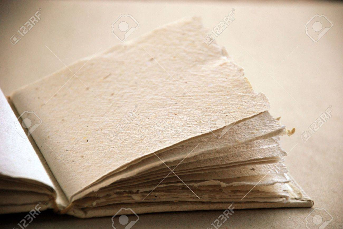 Ecological blank book in sepia Stock Photo - 7371173