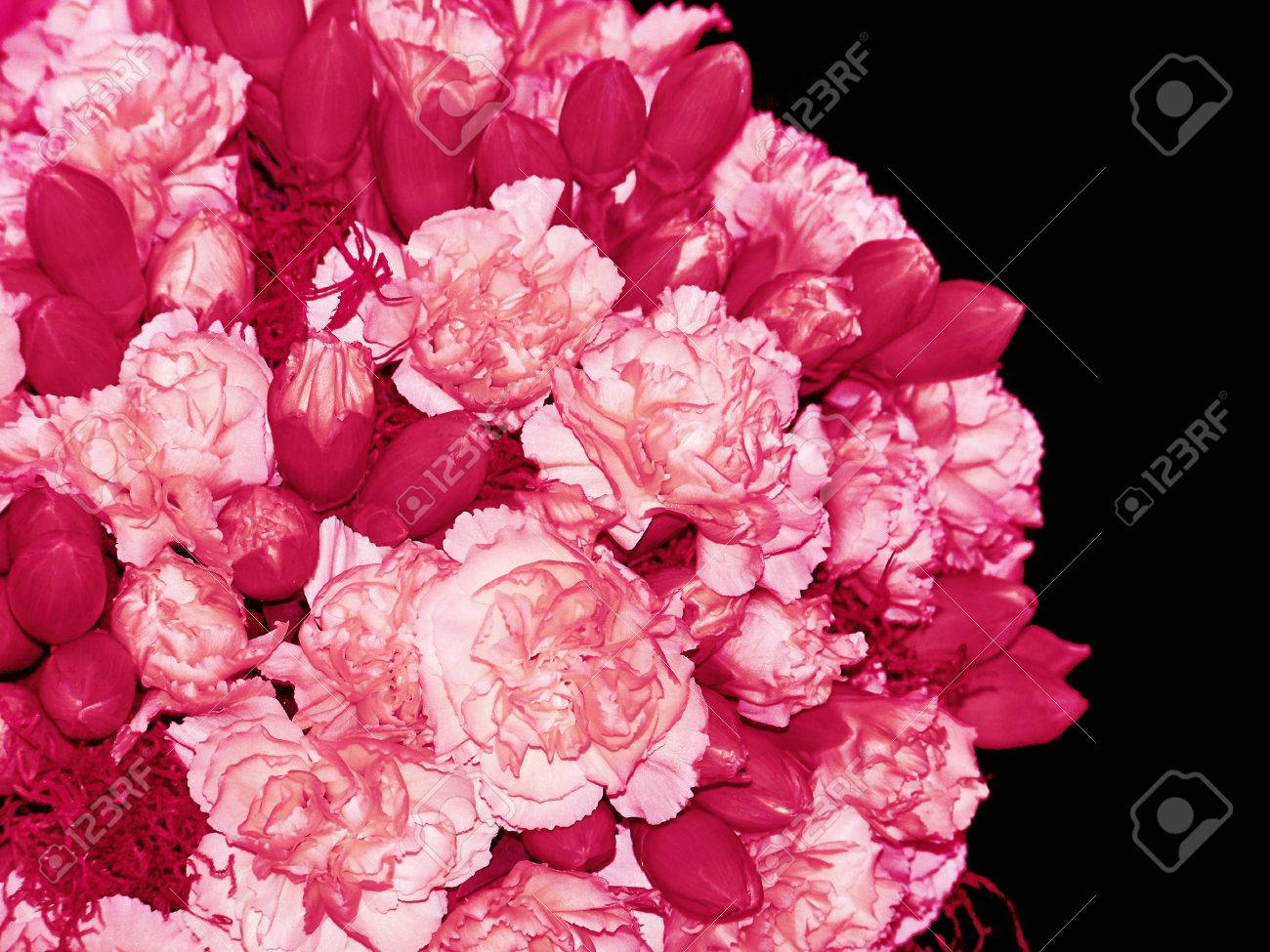 Valentines Pink Bunch Of Flowers On An Spheric Isolated Bouquet