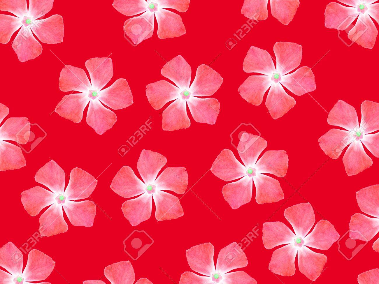 Red Vibrant Background With Real Flowers Pattern Stock Photo