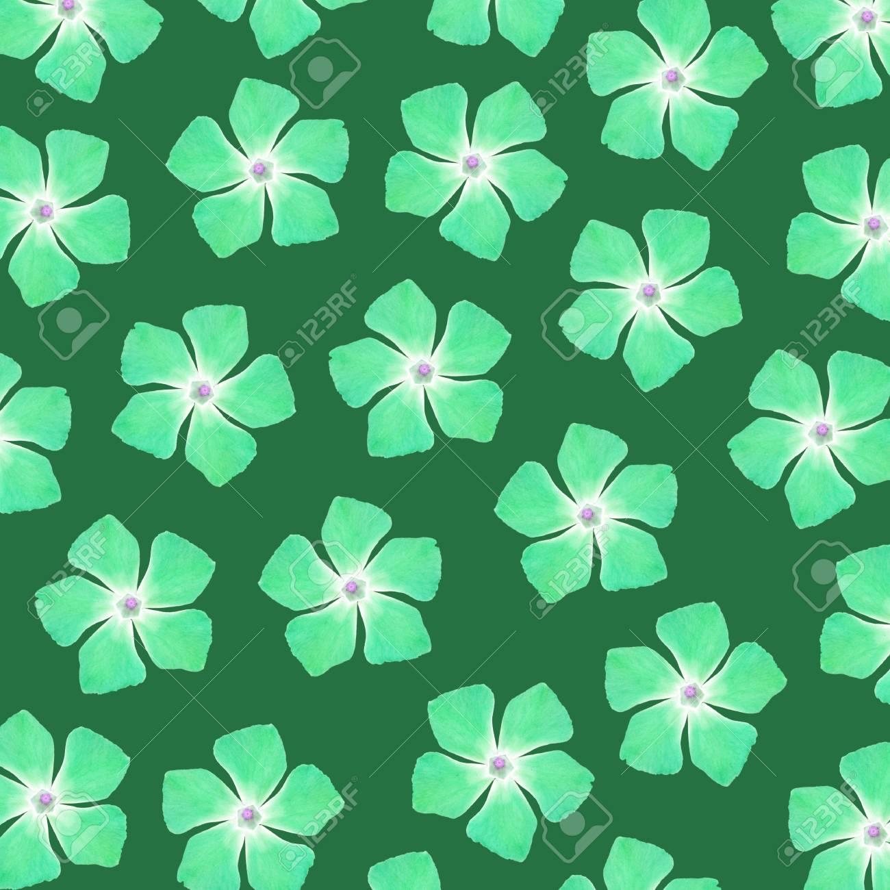 Green flowers pattern Stock Photo - 17226913