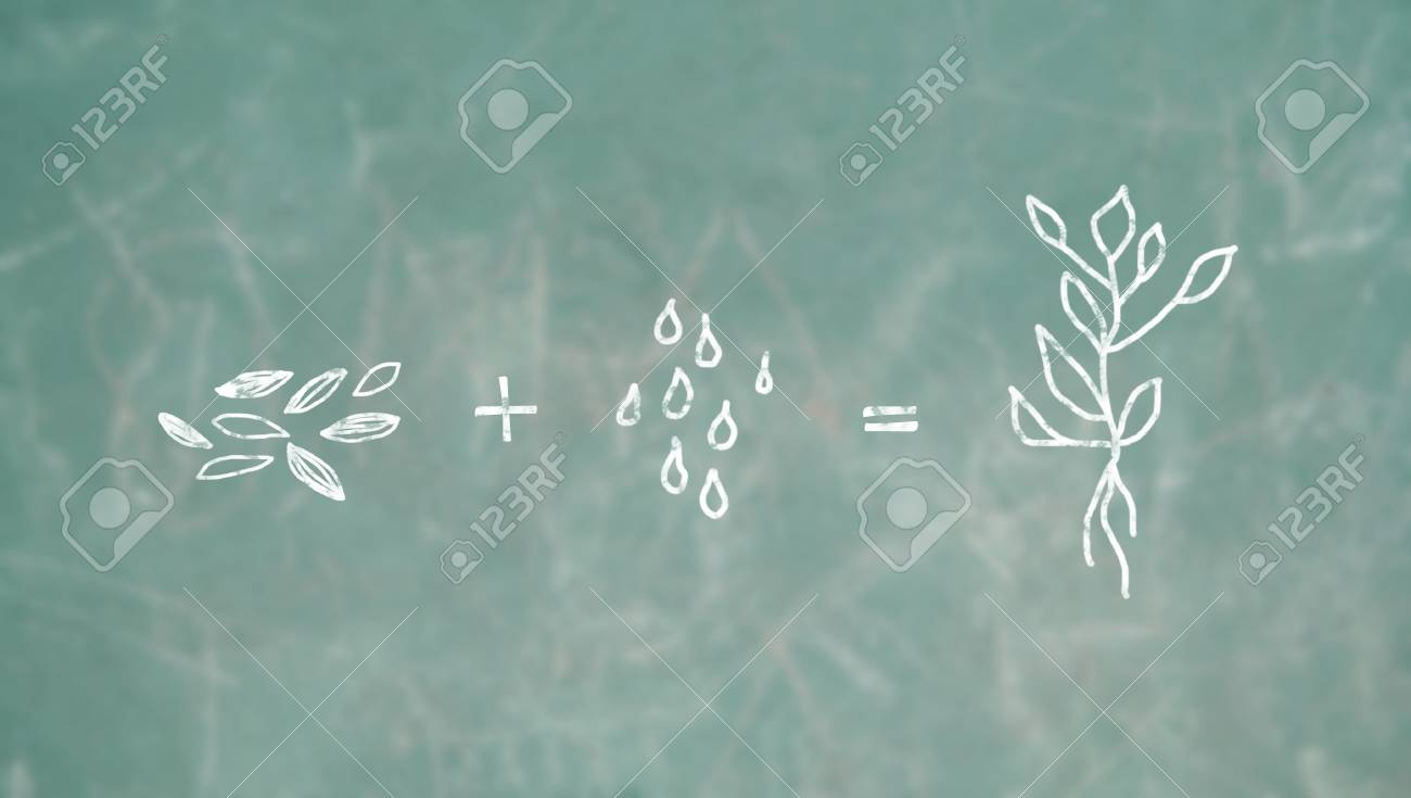 Seeds plus water drops produce a plant, conceptual image Stock Photo - 18593341