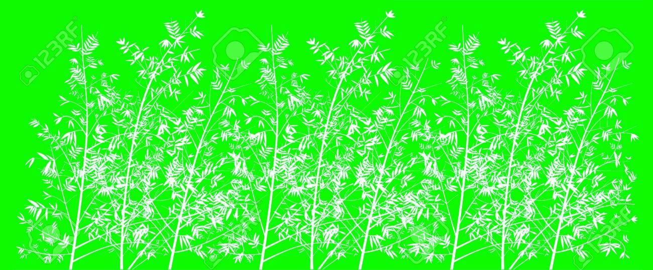 Immagini Stock Fluorescente Sfondo Verde Chiaro Con Il Bianco