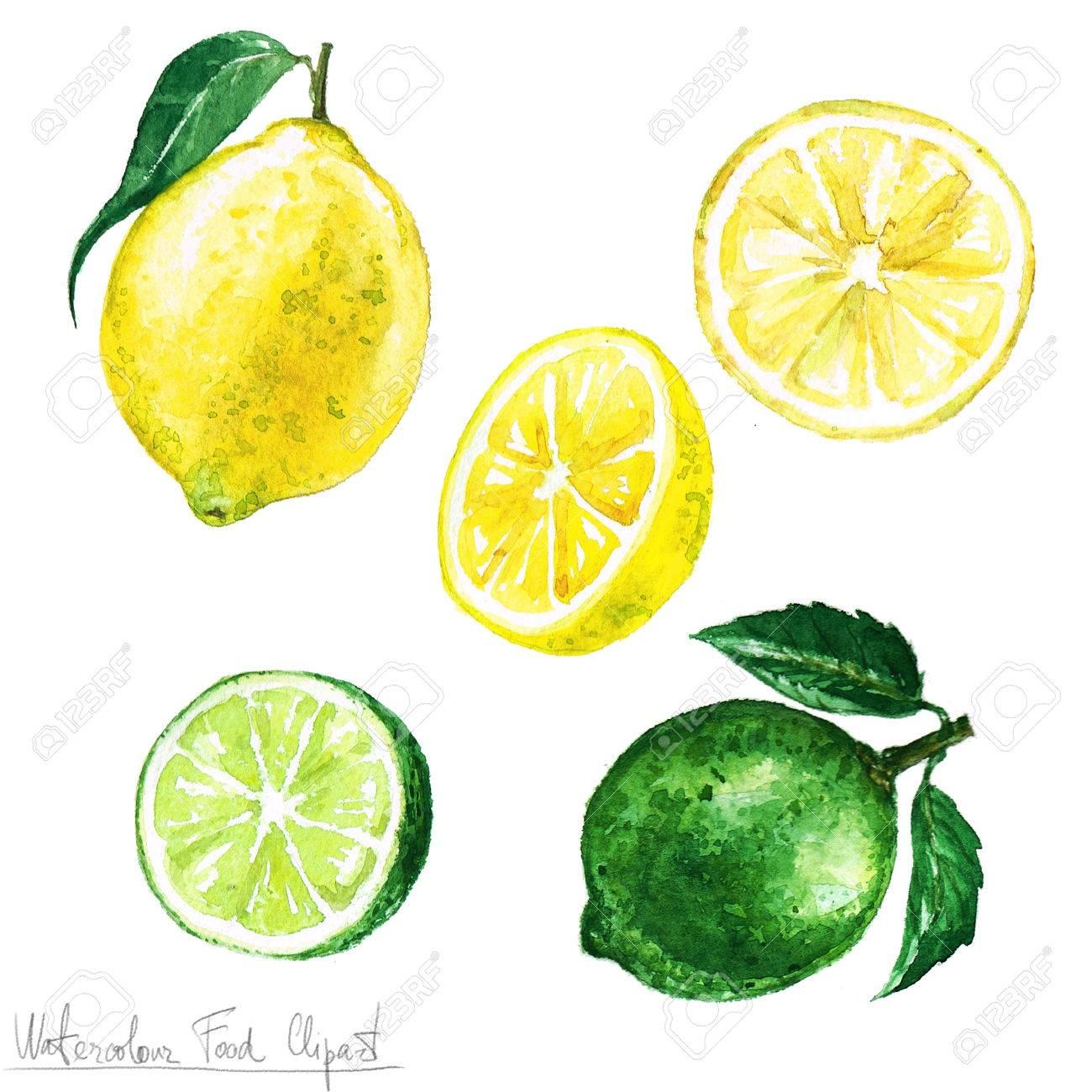 水彩食べ物クリップアート レモンとライム の写真素材画像素材 Image