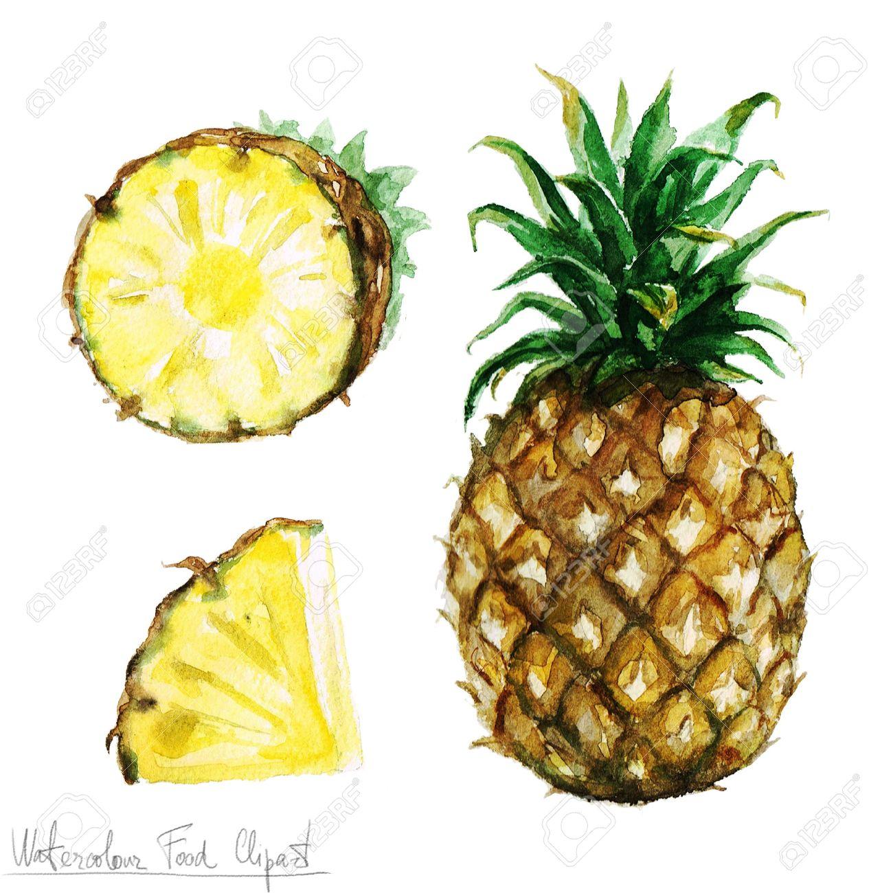 水彩食べ物クリップアート パイナップル の写真素材画像素材 Image