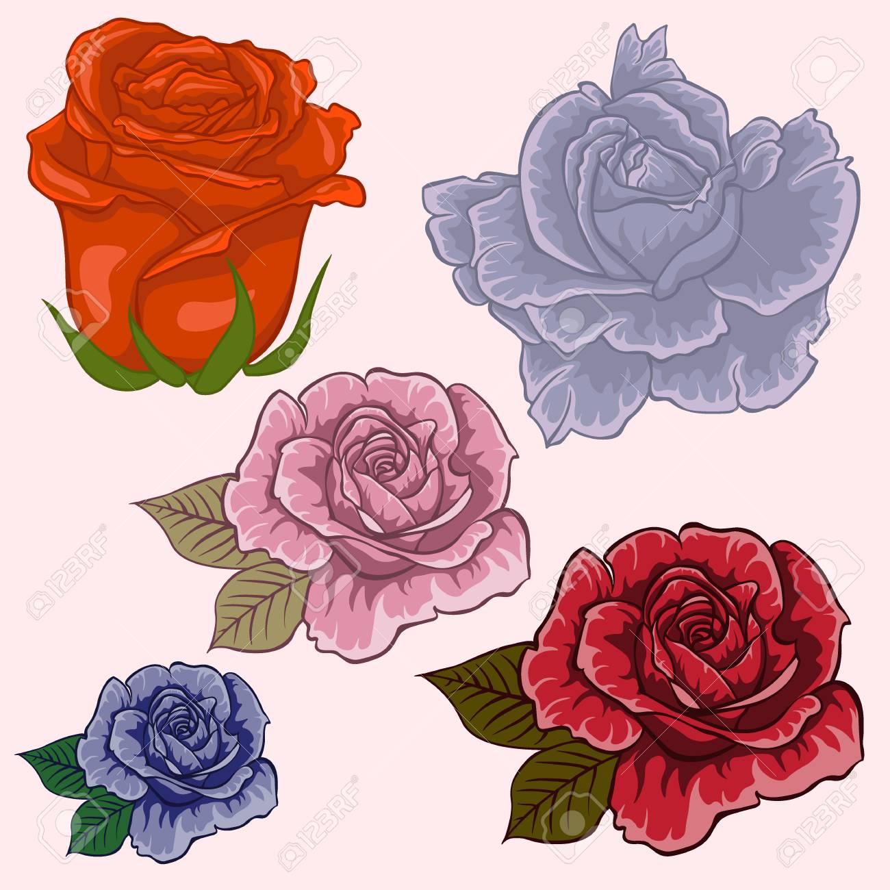 Conjunto De Flores Flores Color De Rosa Aisladas Conjunto Rosado