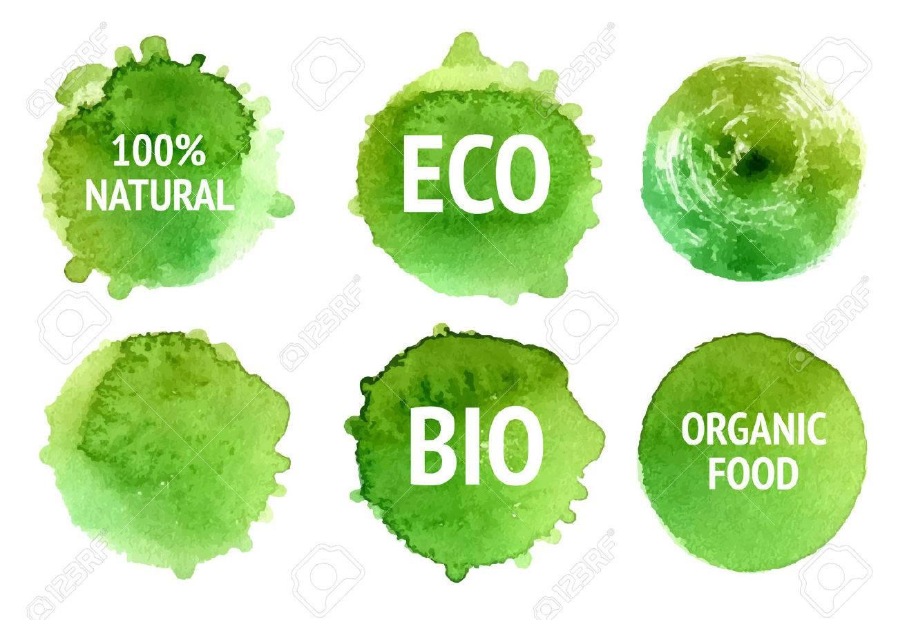 organico vector natural cibo bio etichette eco organici e forme su sfondo