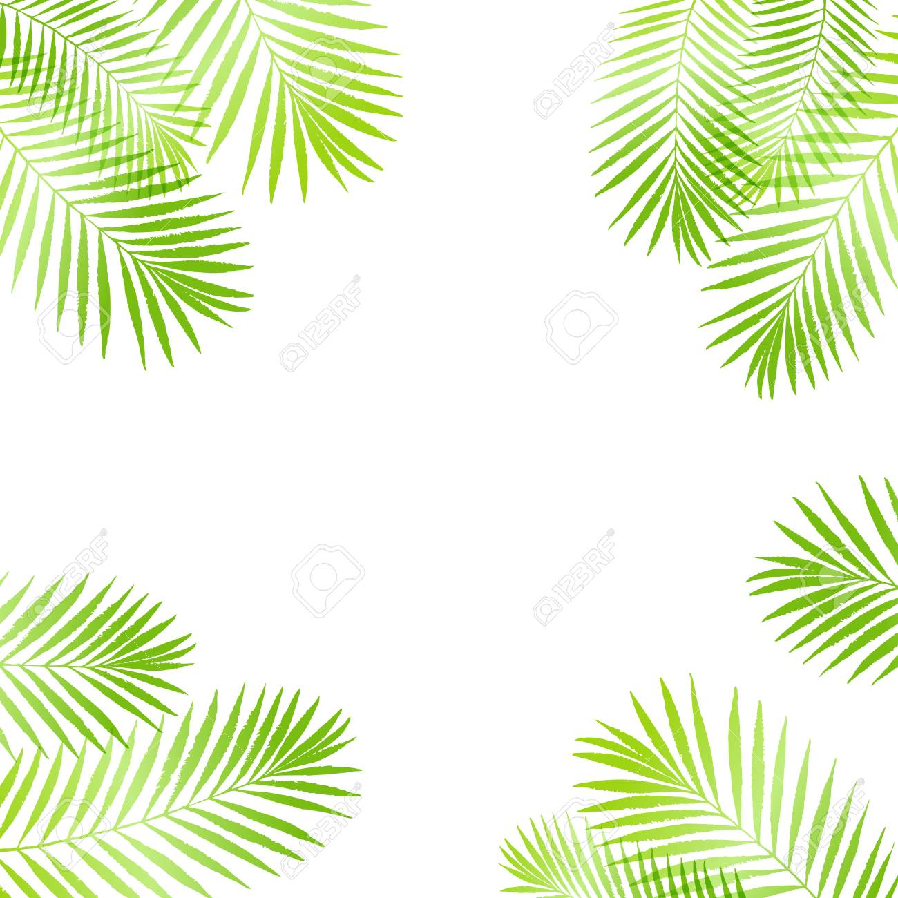 Summer Tropical Palm Tree Leaves Border, Frame Background. Vector ...