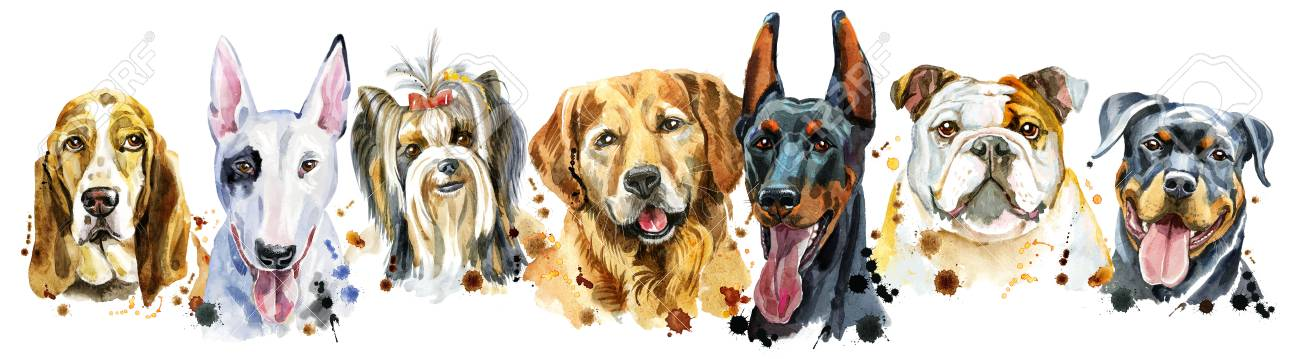 Cute border from watercolor portraits of dogs. For t-shirt graphics. Watercolor dogs illustration - 114047627