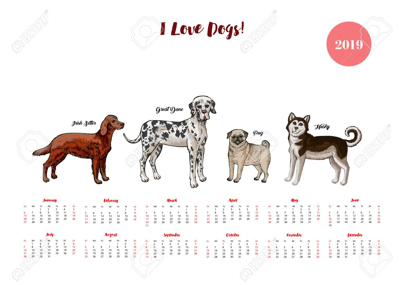Dog Calendar 2019 Dogs Of Different Breeds Sketches Royalty Free