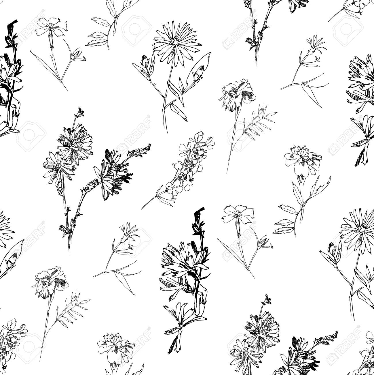 Seamless pattern with Wild Flowers with Summer Botanical Sketches - 123364843