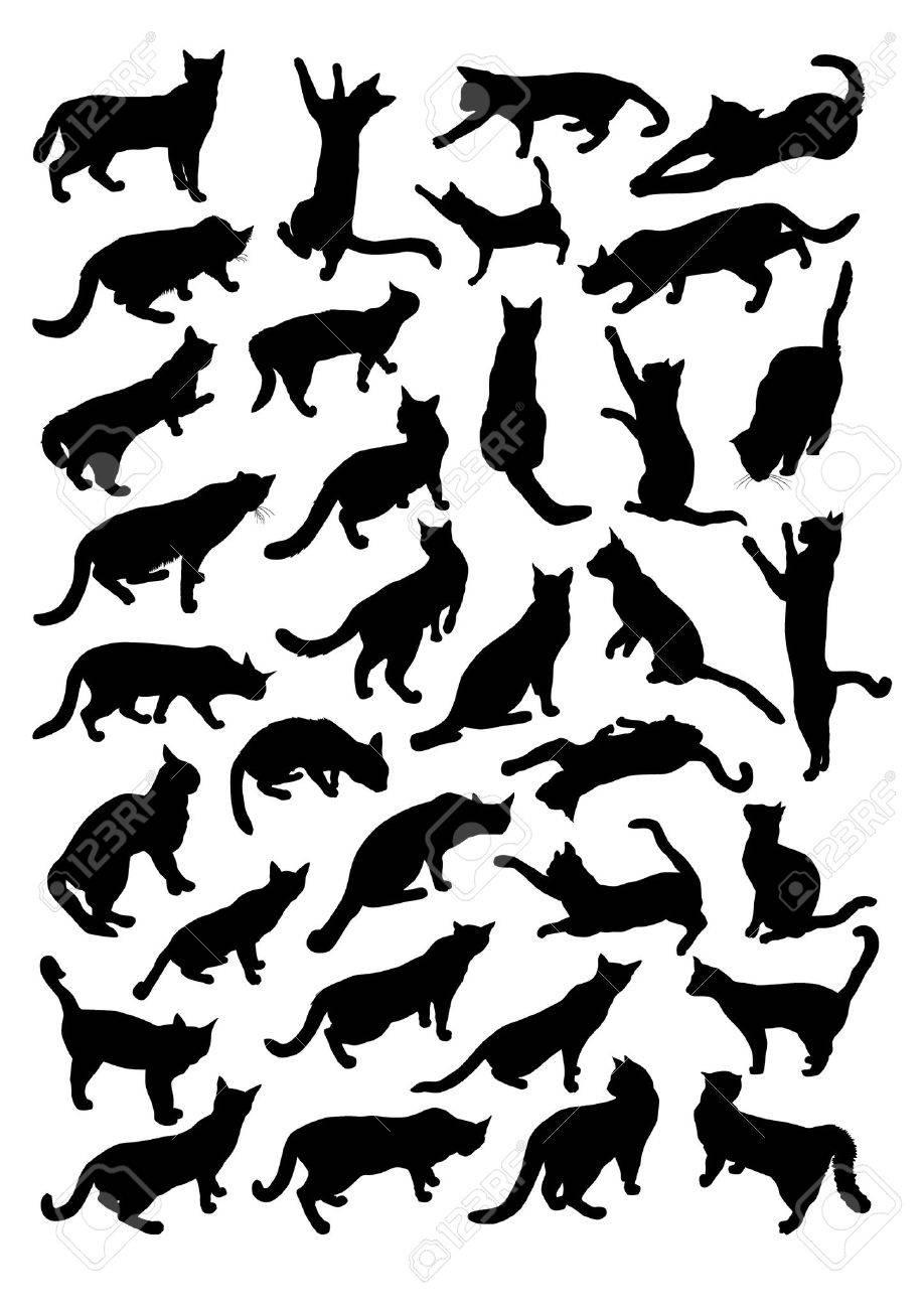 Siluetas de los gatos Foto de archivo - 43852235