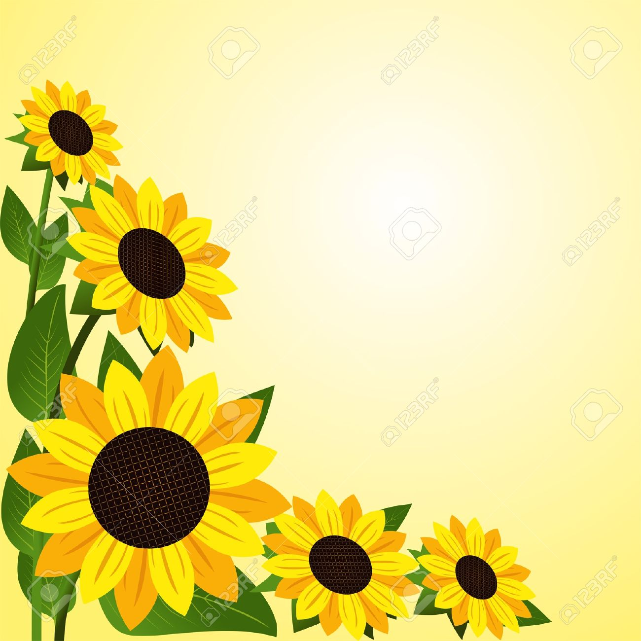 Flower border with Sunflowers - 18703393