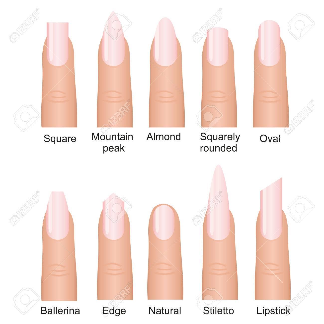 Fantastic Nails Shape Design Sketch - Nail Art Ideas - morihati.com