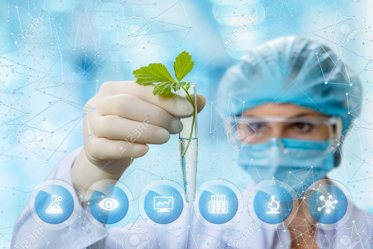 Biochemist Looking At The Sample On Blurred Background Stock Photo