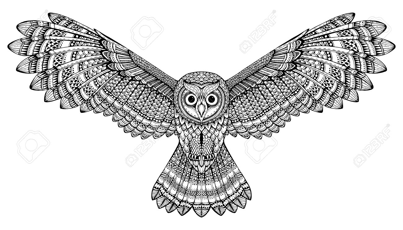 19d558594e115 Hand Drawn Flying Owl. Black And White Art. Royalty Free Cliparts ...
