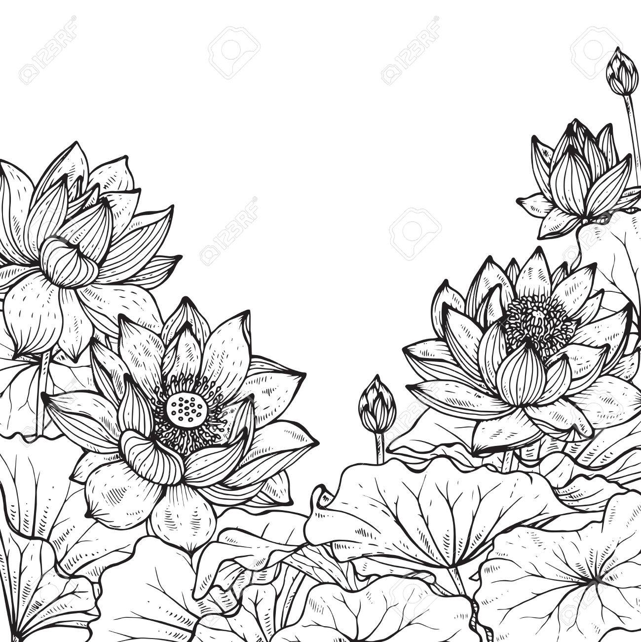 Beautiful Monochrome Vector Floral Frame With Lotus Flowers And