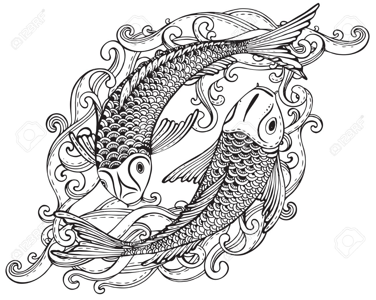 Hand Drawn Vector Illustration Of Two Koi Fishes Japanese Carp