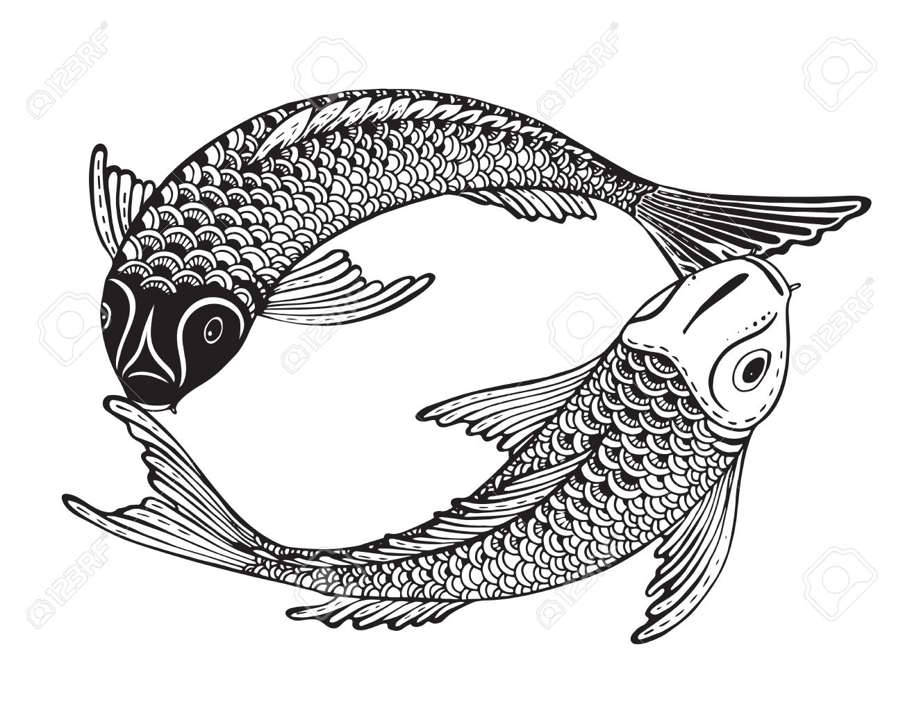 Hand Drawn Vector Illustration Of Two Koi Fishes (Japanese Carp ...