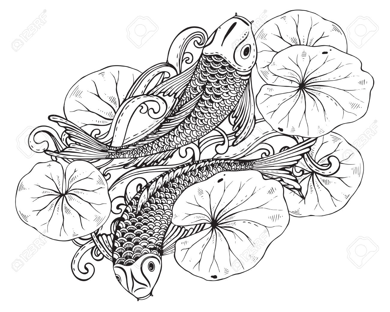 Mano Vector Dibujado La Ilustración De Dos Peces Koi (carpa Japonesa ...