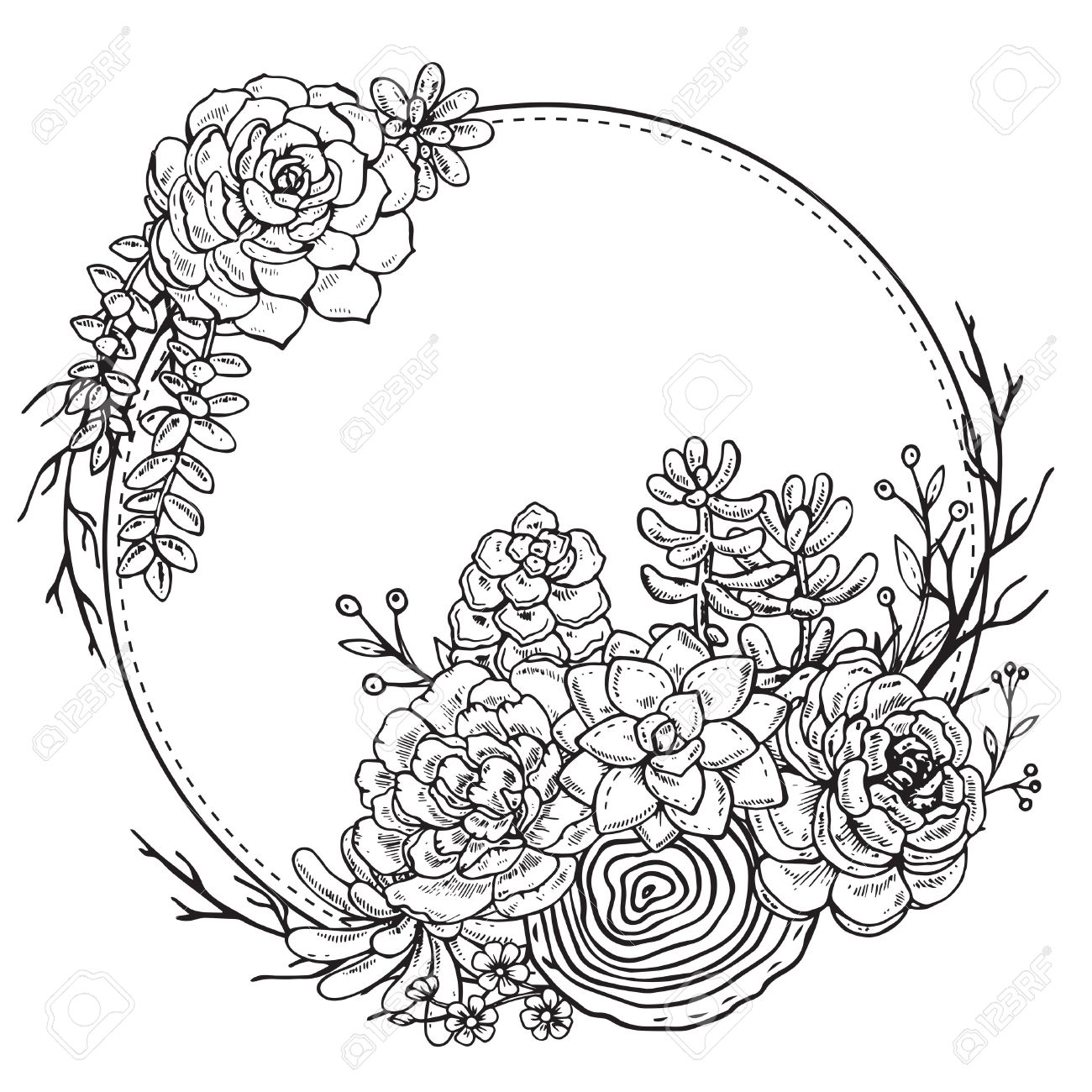 Vector Frame With Hand Drawn Composition Of Succulent Plants ...