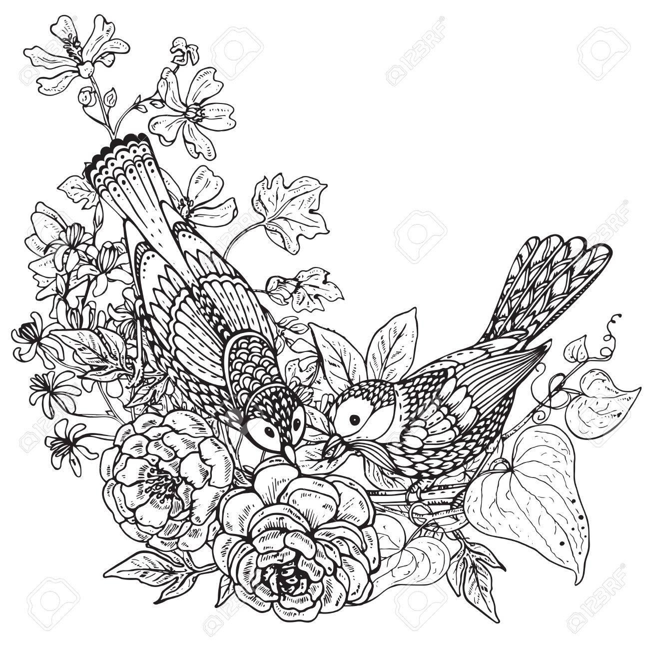 Vector Illustration De Deux Oiseaux Graphiques Dessinés à La Main Et De Pivoine Fleurs Bouquet Et Dautres Plantes Image En Noir Et Blanc Pour Pour