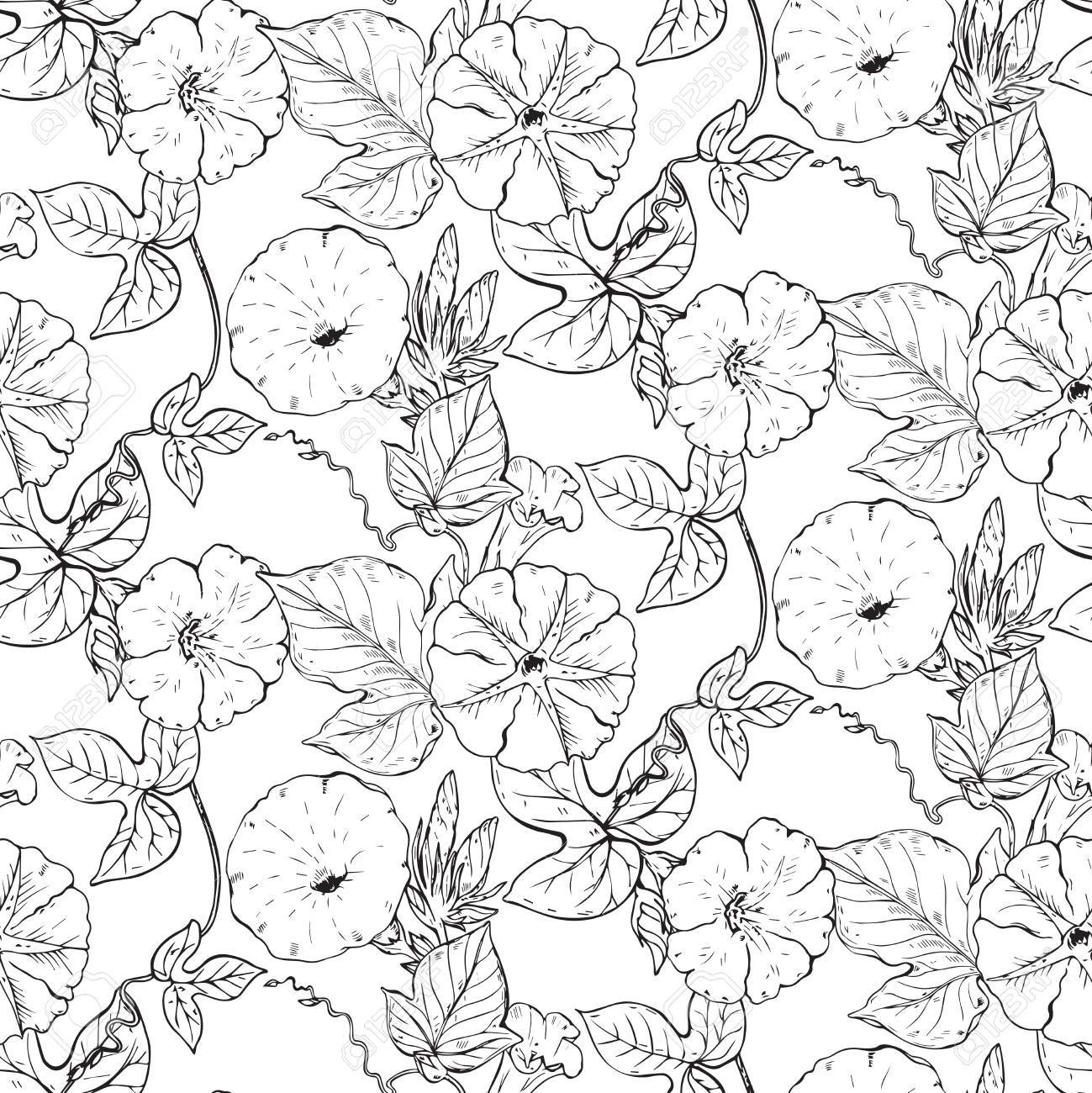 Patrón Transparente De Vector Con Flores De Enredadera De Dibujado A ...
