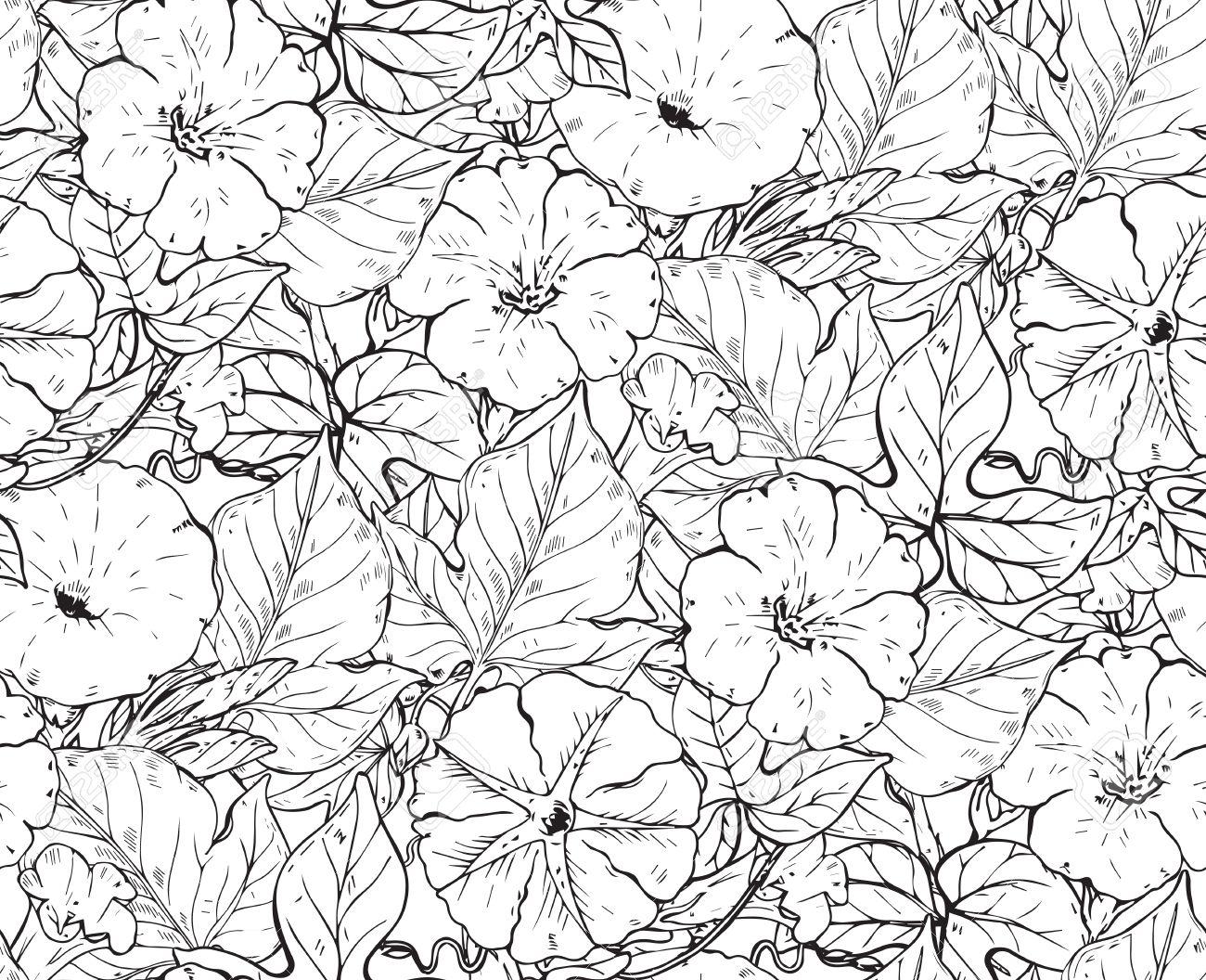 Vector Sin Patrón Con Flores Dibujadas A Mano Enredadera El Fondo Sin Fin Blanco Y Negro