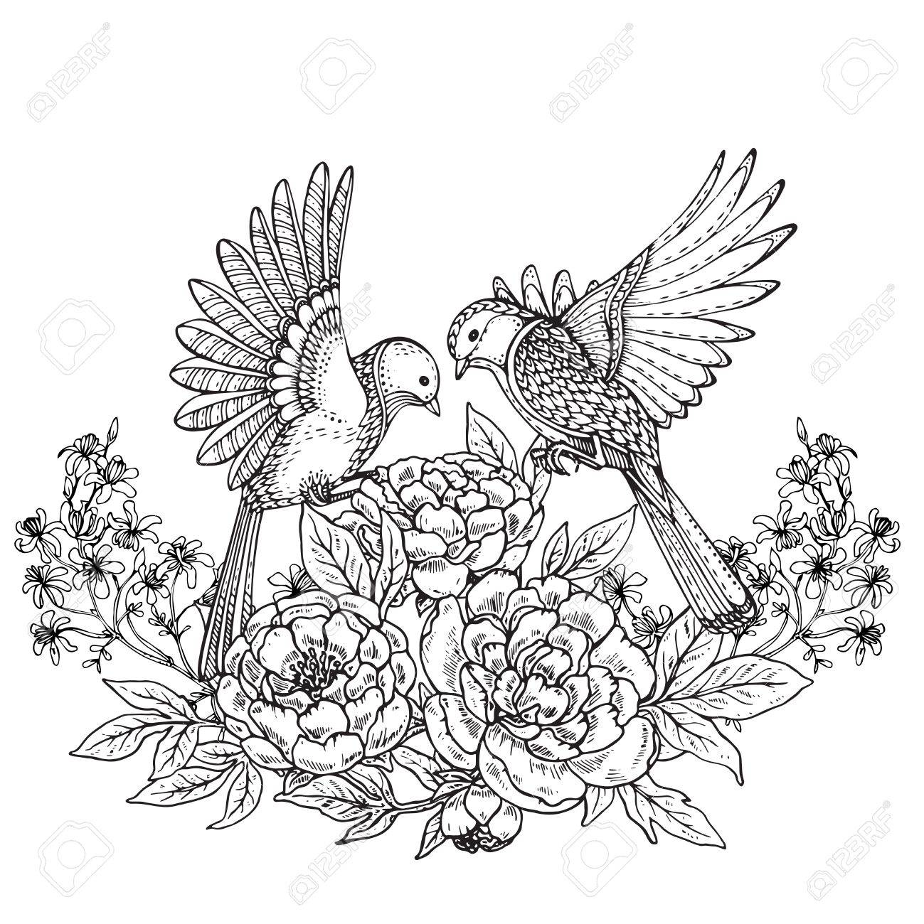 Vector Illustration Of Two Hand Drawn Graphic Birds And Peony