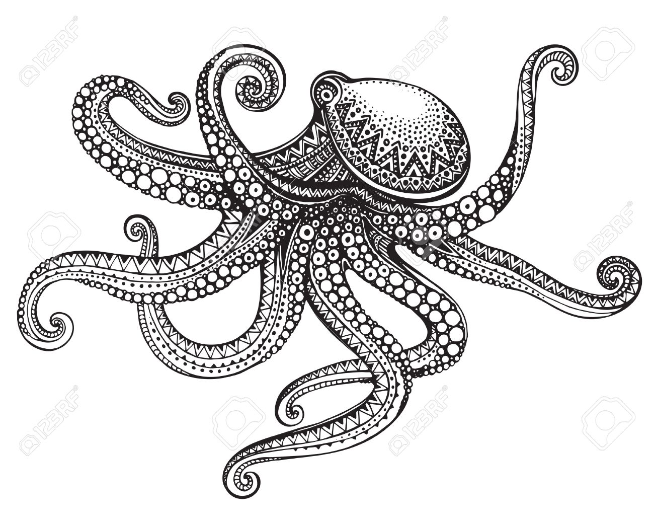 Hand Drawn Octopus In Graphic Ornate Style Vector Illustration