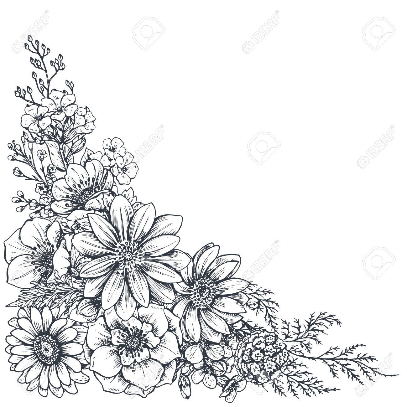 floral backgrounds with hand drawn flowers and plants monochrome vector illustration in sketch style - Floral Backgrounds