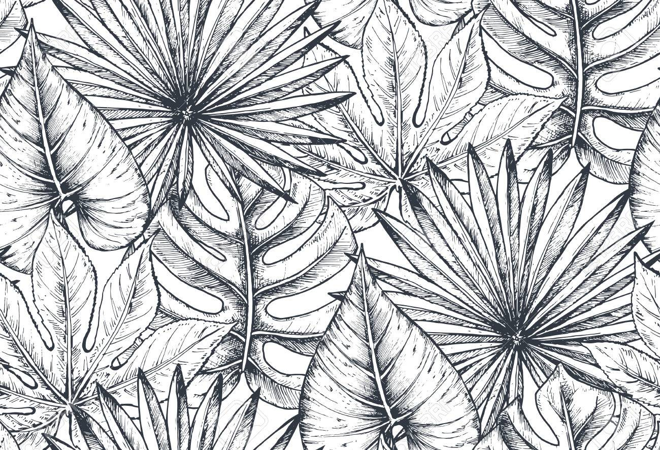 Vector seamless pattern with compositions of hand drawn tropical flowers, palm leaves, jungle plants, paradise bouquet. Beautiful black and white sketched floral endless background Stock Vector - 83921408