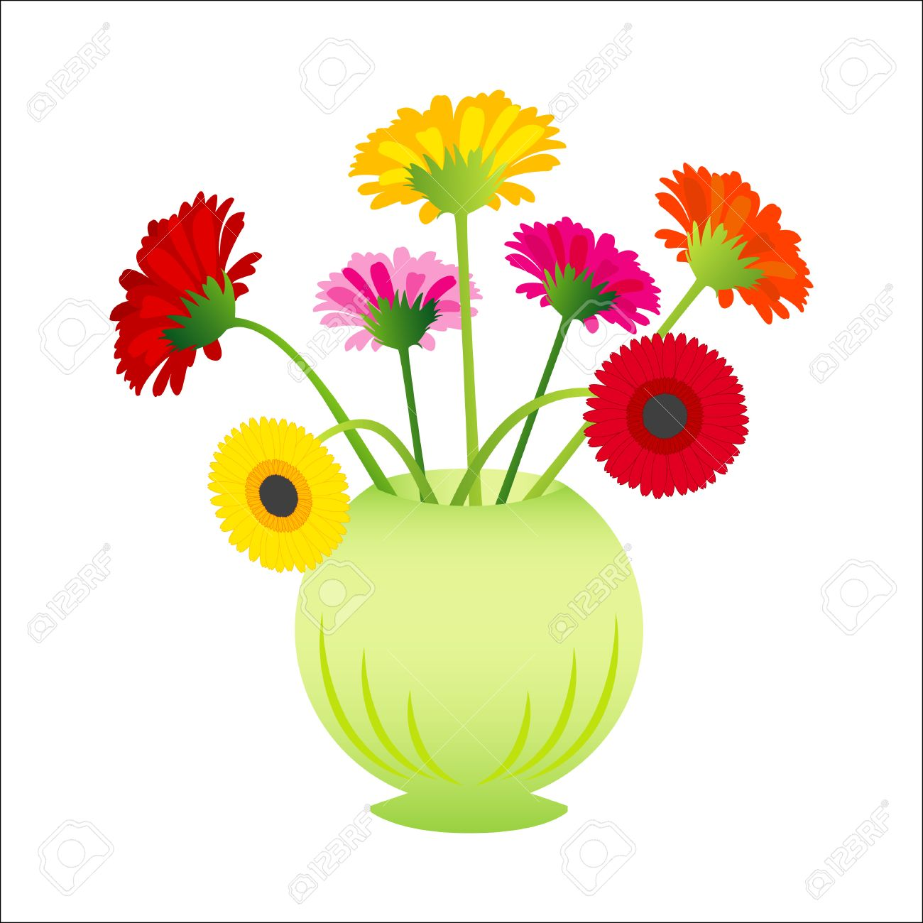 vector flower gerber in vase royalty free cliparts vectors and