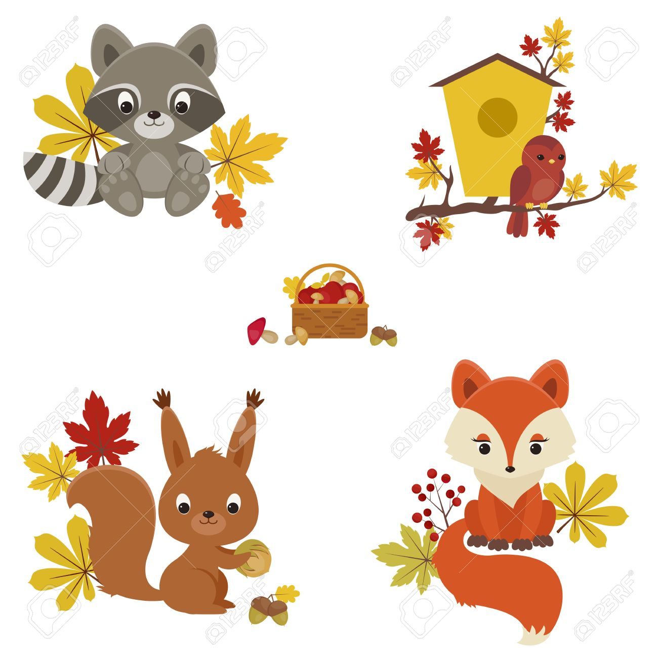Image result for squirrels and raccoons clipart