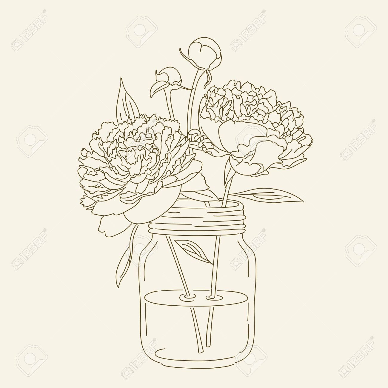 Hand Drawn Peonies In Mason Jar Hand Drawn Illustration Coloring