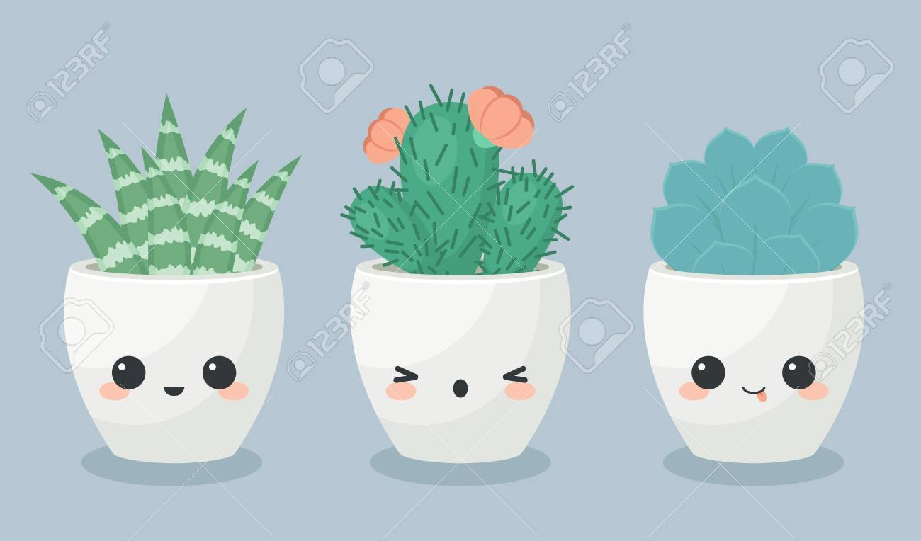 Succulents In Faces Flower Pots. Vector Illustration. Stock Vector    63519726