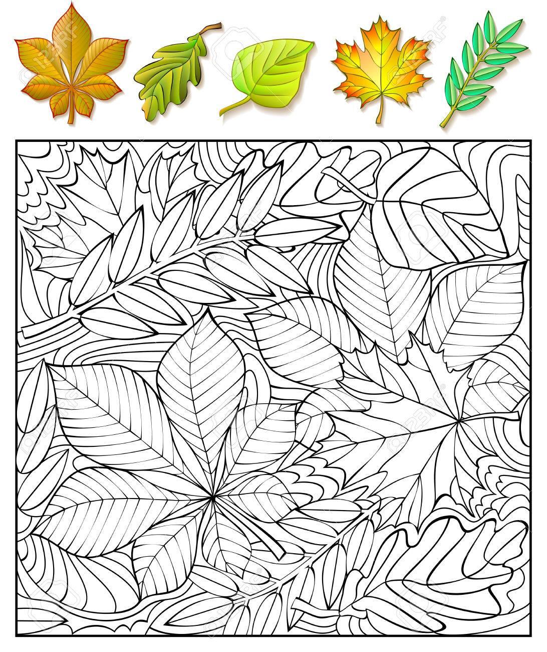Ejercicios Para Los Niños Necesidad De Encontrar Y Pintar Las Hojas El Desarrollo De Habilidades Para Dibujar Y Colorear Imagen Del Vector