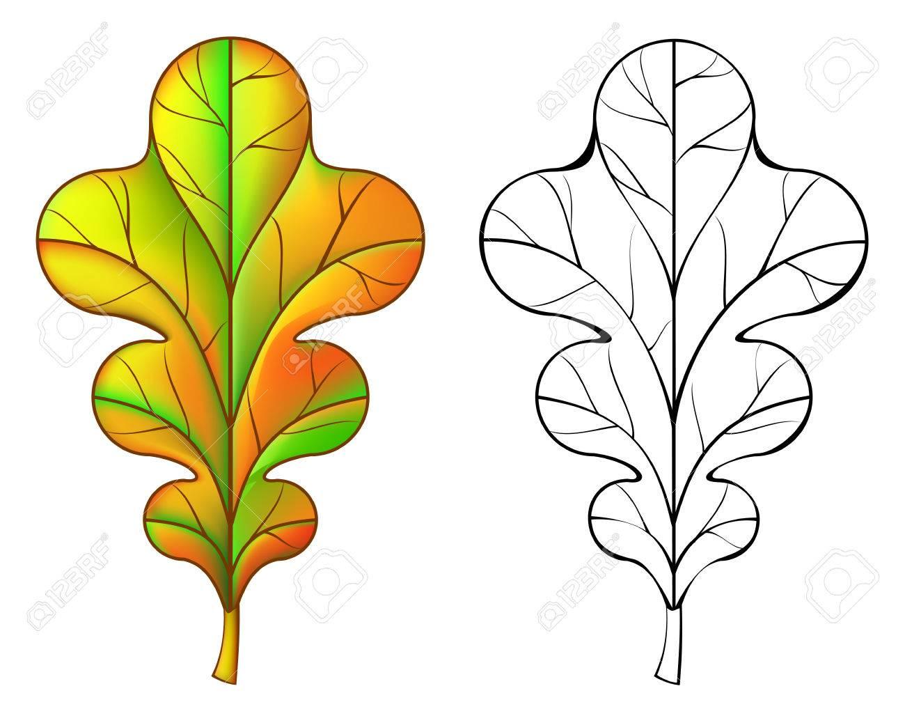 Ausmalbilder Herbst Ausmalbild Eichenblatt