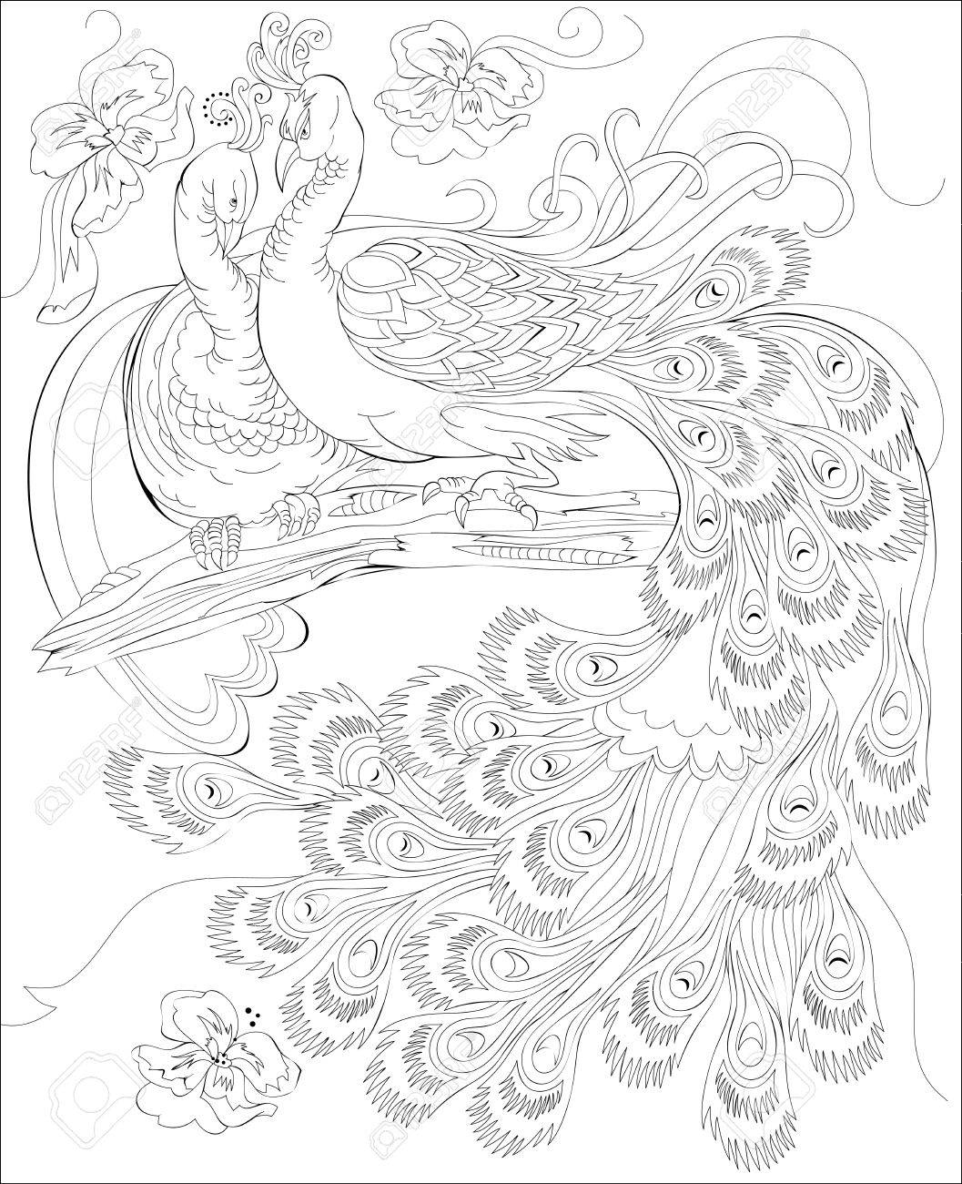 Black and white page for coloring. Fantasy drawing of peacocks couple. Worksheet for children and adults. Vector image. - 74316028