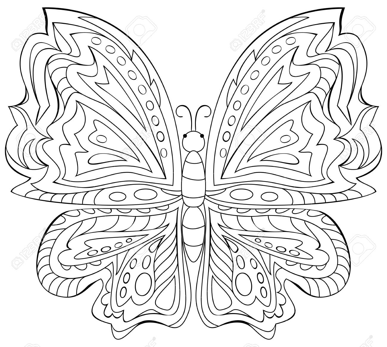 Schwarz-Weiß-Darstellung Der Schmetterling Zum Ausmalen. Entwicklung ...