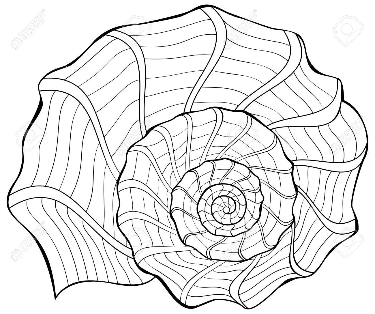 Black and white illustration of a shell for coloring. Worksheet for children and adults. Vector image. - 86999819